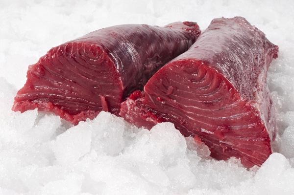 Tamaño del atún rojo salvaje