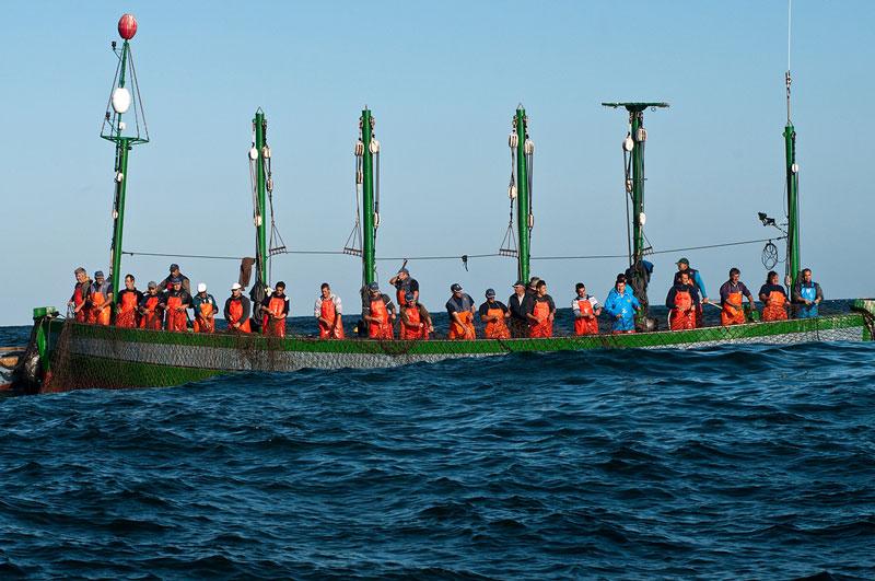 barco pesca almadraba cadiz atun rojo